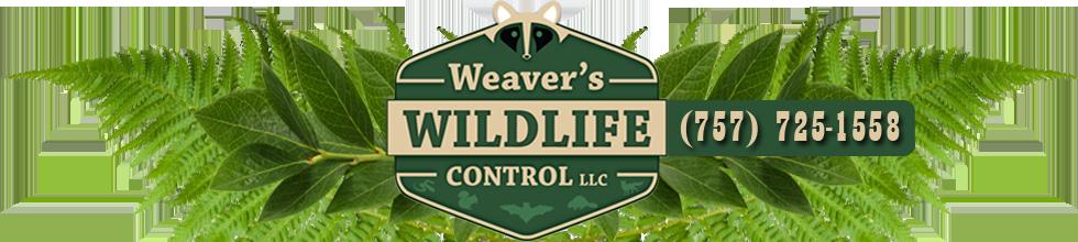 Weaver's Wildlife Control Hampton Virginia